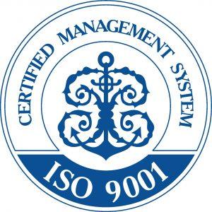 ISO 9001_en 2